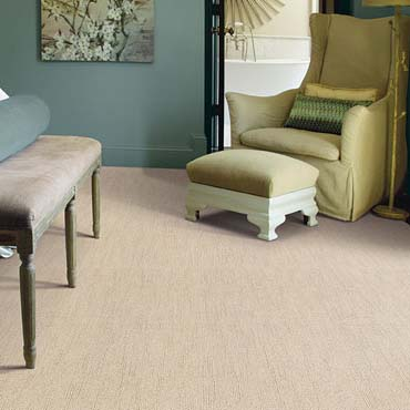 Caress Carpet by Shaw | High Ridge, MO
