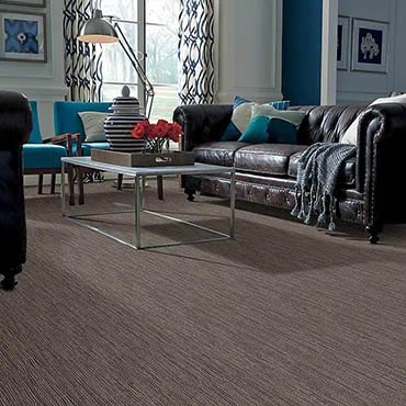 Anso® Nylon Carpet | High Ridge, MO